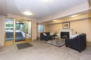 Photo 20: 211 1005 McKenzie Ave in Saanich: SE Quadra Condo for sale (Saanich East)  : MLS®# 843439