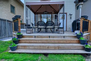 Photo 9: 39 Erin Green Way SE in Calgary: Erin Woods Detached for sale : MLS®# A1118796