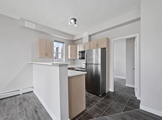 Photo 6: 301 1053 10 Street SW in Calgary: Beltline Apartment for sale : MLS®# A1103553