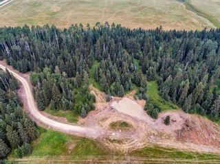 Photo 20: 31339 Rge Rd 55: Rural Mountain View County Land for sale : MLS®# A1136736