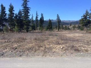 Main Photo: 589 MCLEAN ROAD in : Barriere Lots/Acreage for sale (North East)  : MLS®# 131670