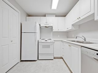 Photo 8: 213 5000 Somervale Court SW in Calgary: Somerset Apartment for sale : MLS®# A1128519
