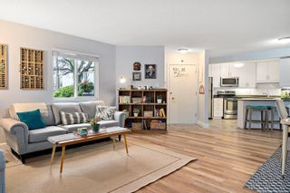 Photo 21: 1 1331 Johnson St in : Vi Fernwood Condo for sale (Victoria)  : MLS®# 862010