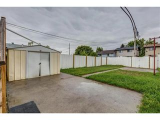 Photo 18: 145 Dovertree Place SE in Calgary: Dover Semi Detached for sale : MLS®# A1090891