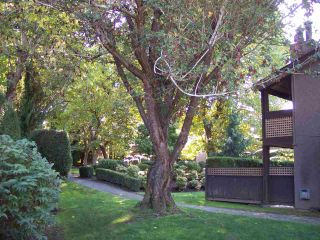 """Photo 12: 124 34909 OLD YALE Road in Abbotsford: Abbotsford East Townhouse for sale in """"The Gardens"""" : MLS®# R2213334"""