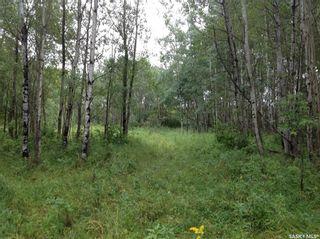 Photo 4: Land 88 acres in Hudson Bay: Lot/Land for sale : MLS®# SK852546