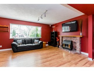 Photo 15: 20285 CHIGWELL Street in Maple Ridge: Southwest Maple Ridge House for sale : MLS®# R2193938