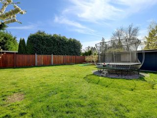 Photo 20: 1025 Nicholson St in : SE Lake Hill House for sale (Saanich East)  : MLS®# 872923