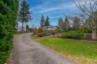 Photo 9: 616 Cormorant Pl in : CR Campbell River Central House for sale (Campbell River)  : MLS®# 868782