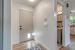 Photo 17: 135 Doverglen Place SE in Calgary: Dover Detached for sale : MLS®# A1058125