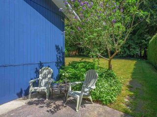 Photo 17: 1038 STEPHENS Road: Roberts Creek House for sale (Sunshine Coast)  : MLS®# R2554256