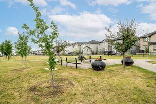 Photo 36: 60 Skyview Shores Gardens NE in Calgary: Skyview Ranch Detached for sale : MLS®# A1132367