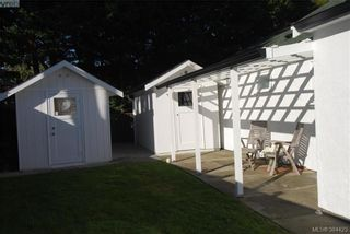 Photo 15: 4012 N Raymond St in VICTORIA: SW Glanford House for sale (Saanich West)  : MLS®# 772693