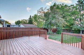 Photo 17: 14231 30 Street in Edmonton: Zone 35 House for sale : MLS®# E4261642