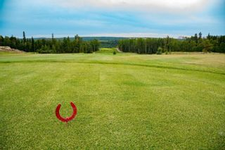 Photo 4: 86 454029 RGE RD 11: Rural Wetaskiwin County Rural Land/Vacant Lot for sale : MLS®# E4258383