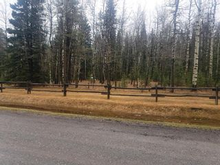 Main Photo: 50117 Boyce Ranch Road W: Bragg Creek Land for sale : MLS®# A1043771