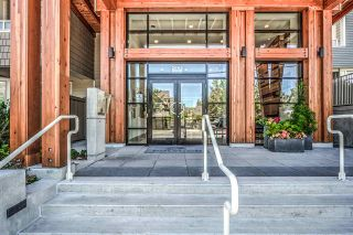 Photo 24: 411 2665 MOUNTAIN Highway in North Vancouver: Lynn Valley Condo for sale : MLS®# R2463896