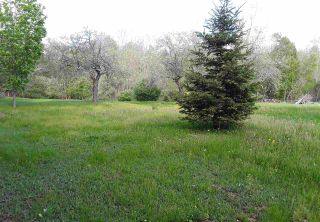 Photo 4: 11 Palmer Road in Harmony: 404-Kings County Vacant Land for sale (Annapolis Valley)  : MLS®# 202006110