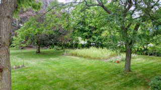 Photo 5: 0 Clifton Road in Port Hope: Land Only for sale : MLS®# 40051321