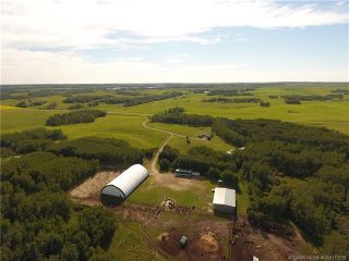 Photo 34: 41405 Range Road 231: Rural Lacombe County Detached for sale : MLS®# CA0173239