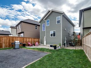 Photo 32: 30 Cranford Bay SE in Calgary: Cranston Detached for sale : MLS®# A1138033