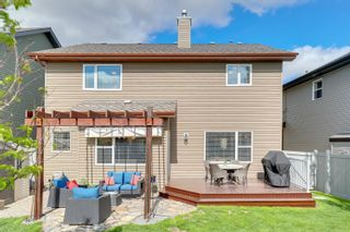 Photo 43: 718 CAINE Boulevard in Edmonton: Zone 55 House for sale : MLS®# E4248900