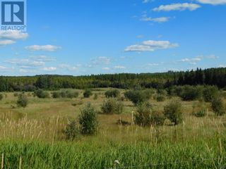 Photo 3: 35 Acres For Sale