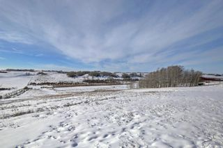 Photo 43: 275033 RANGE ROAD 22 in Rural Rocky View County: Rural Rocky View MD Detached for sale : MLS®# A1106587