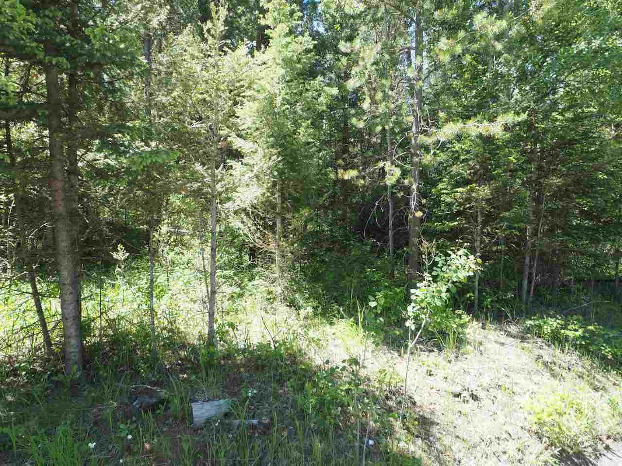 Photo 2: Photos: LOT 9 EASZEE Drive in 108 Mile Ranch: 108 Ranch Land for sale (100 Mile House (Zone 10))  : MLS®# R2467252