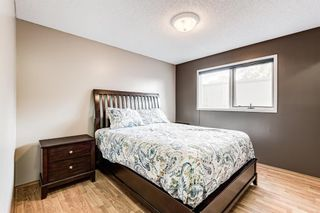 Photo 30: 51 Millrise Way SW in Calgary: Millrise Detached for sale : MLS®# A1126137