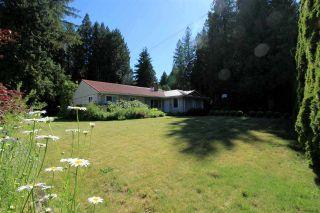 Photo 13: 12588 24 Avenue in Surrey: Crescent Bch Ocean Pk. House for sale (South Surrey White Rock)  : MLS®# R2178943