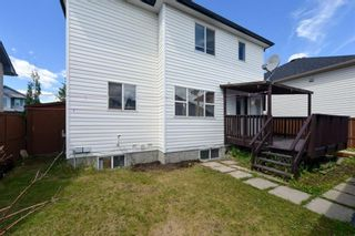 Photo 31: 10 Martha's Meadow Bay NE in Calgary: Martindale Detached for sale : MLS®# A1124430