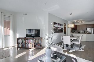 Photo 21: 110 838 19 Avenue SW in Calgary: Lower Mount Royal Apartment for sale : MLS®# A1073517