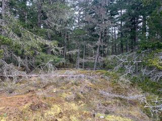 Photo 12: 2740 Phillips Rd in : Sk Phillips North Land for sale (Sooke)  : MLS®# 861867