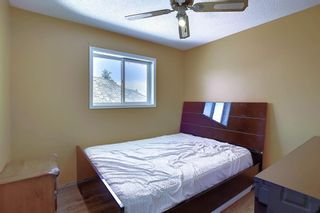 Photo 25: 1016 Country Hills Circle NW in Calgary: Country Hills Detached for sale : MLS®# A1049771