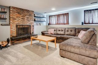 Photo 24: 136 Whiteside Crescent NE in Calgary: Whitehorn Detached for sale : MLS®# A1109601