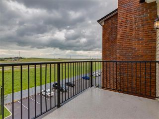 Photo 28: #3413 755 COPPERPOND BV SE in Calgary: Copperfield Condo for sale : MLS®# C4086900