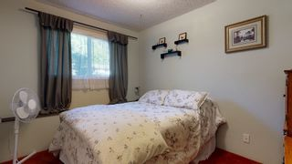 Photo 29: 38244 JUNIPER Crescent in Squamish: Valleycliffe House for sale : MLS®# R2616219