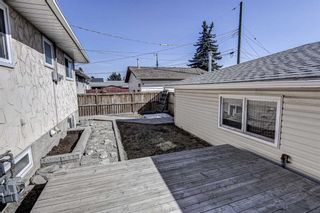 Photo 34: 126 Dovercliffe Way SE in Calgary: Dover Detached for sale : MLS®# A1082276
