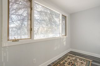 Photo 8: 11415 68 Street in Edmonton: Zone 09 House for sale : MLS®# E4229071