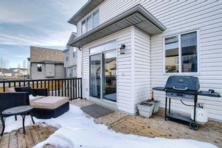 Photo 17: 900 Copperfield Boulevard SE in Calgary: Copperfield Detached for sale : MLS®# A1079249