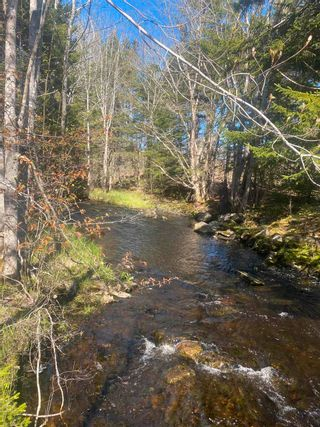 Photo 11: Lot NO 101 Highway in Brighton: 401-Digby County Vacant Land for sale (Annapolis Valley)  : MLS®# 202111786