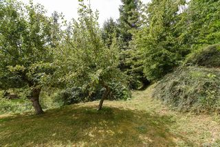 Photo 29: 3777 Laurel Dr in : CV Courtenay South House for sale (Comox Valley)  : MLS®# 870375