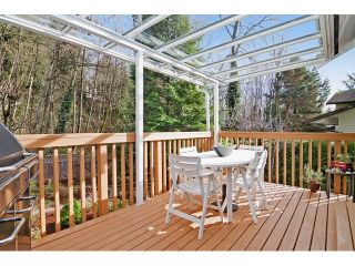Photo 17: 1259 CHARTER HILL Drive in Coquitlam: Upper Eagle Ridge House for sale : MLS®# V1108710