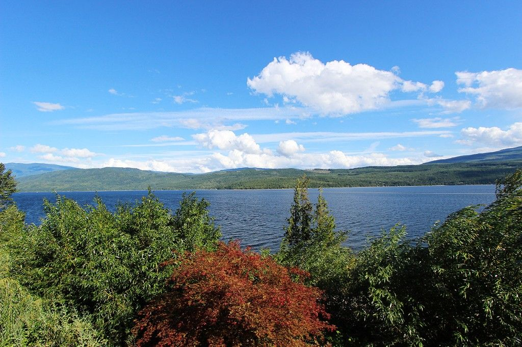Photo 18: Photos: 8079 Squilax Anglemont Highway: St. Ives House for sale (North Shuswap)  : MLS®# 10179329