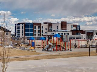 Photo 38: 1611 4641 128 Avenue NE in Calgary: Skyview Ranch Apartment for sale : MLS®# A1029088