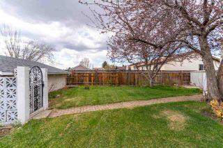 Photo 33: 4107 27 Avenue in Edmonton: Zone 29 House for sale : MLS®# E4244259