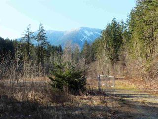 Photo 17: 21902 UNION BAR Road in Hope: Hope Kawkawa Lake Land for sale : MLS®# R2467753