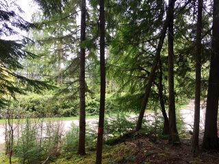 Photo 6: 3,4,6 Armstrong Road in Eagle Bay: Vacant Land for sale : MLS®# 10133907