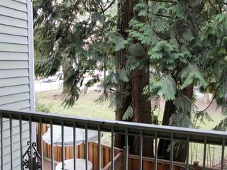 Photo 9: 4 33293 E BOURQUIN Crescent in Abbotsford: Central Abbotsford Townhouse for sale : MLS®# R2135659